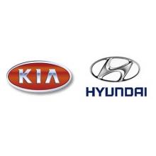 Kia/Hyundai diagnostikos įranga