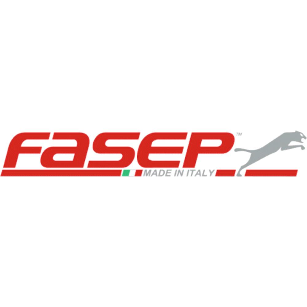 FASEP